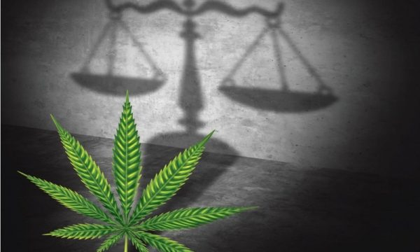 Cannabis Law in New Jersey